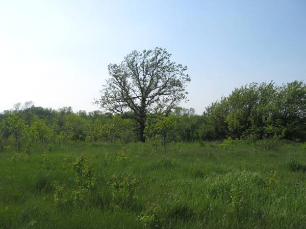 Beautiful 16.07ac Vacant Land For Sale
