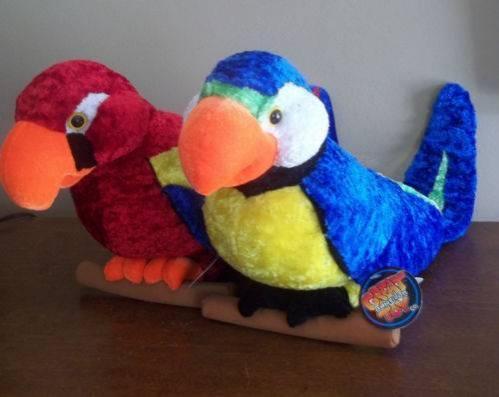 Parrots For Sale in Toledo Ohio