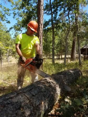 Firewood-Cutting-Splitting-Stacking work wanted